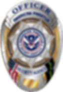 APSA Silver Badge.png