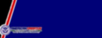 V - Large Slash Website with Seal Vector
