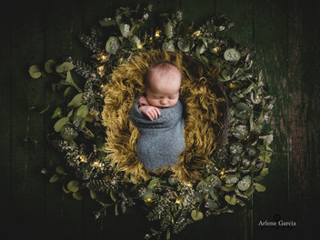 Donovan's Newborn Session