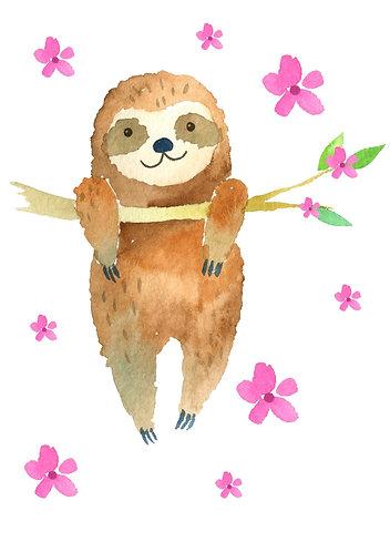 Sloth order Lisa Gatto