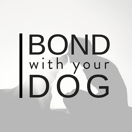 Bond With Your Dog's Logo