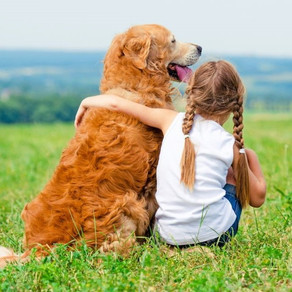Could dogs help to reverse the trend of declining empathy in society?