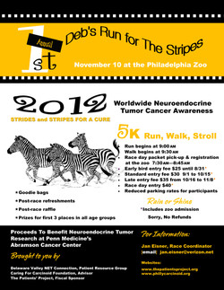 Flyer: Deb's Run for The Stripes