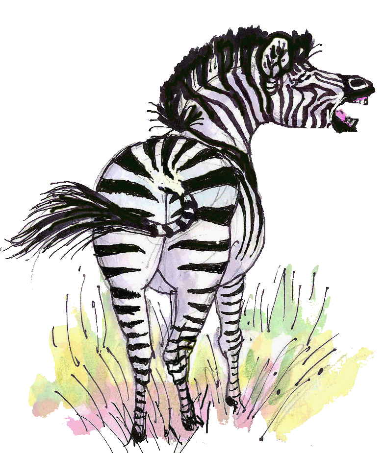Barking Zebra