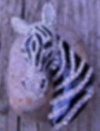 Sparkling Zebra Head.jpg