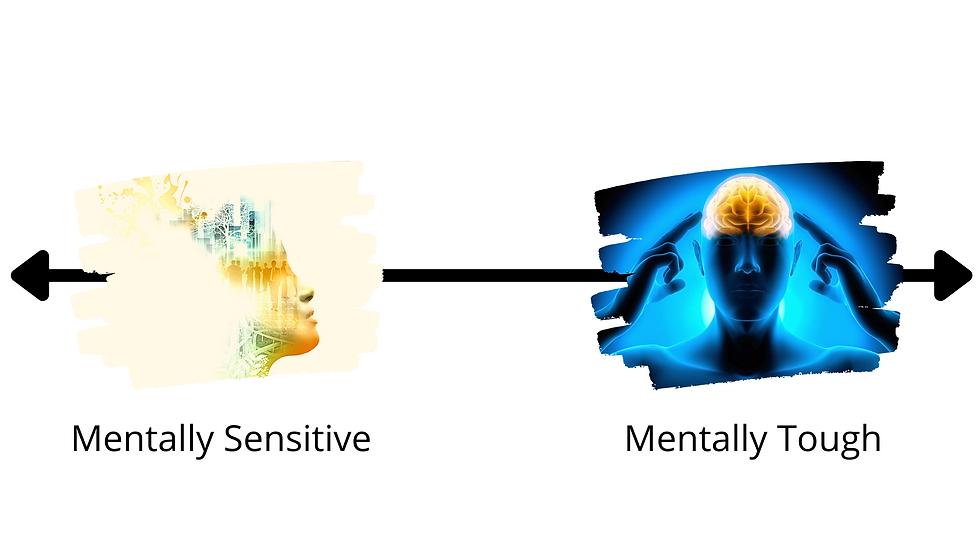 Mentally Sensitive.png