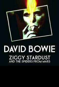 Ziggy-2.png