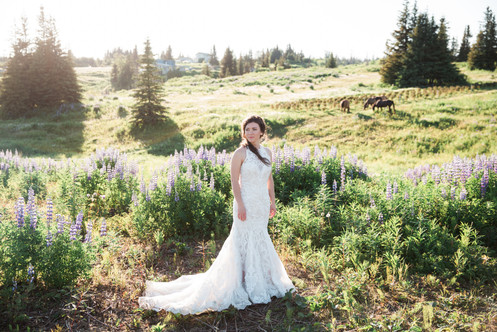 Mid June - Bride and Lupines