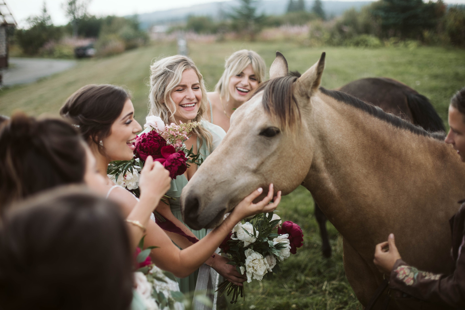 Mid August - Bride and Bridesmaids with AK Diamond J horses