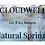 Thumbnail: Signature Scented Non-Tallow Liquid Soap