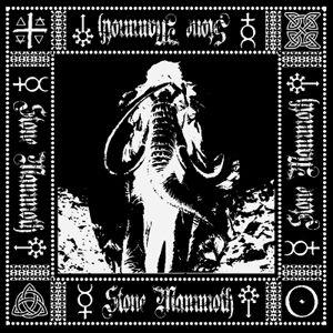 Stone Mammoth- Debut Album use.jpg