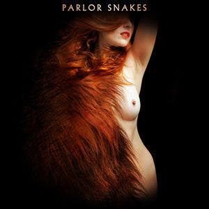 Parlor Snakes use.jpg