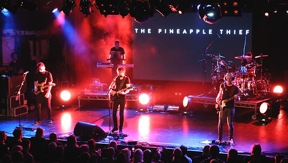 Pineapple Theif 1.jpg