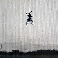 La voladora.jpg