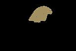Falcon_Logo_rgb_PB_v_01_trans.png