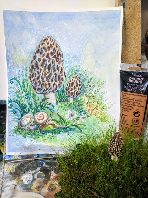 Morel of the Woods