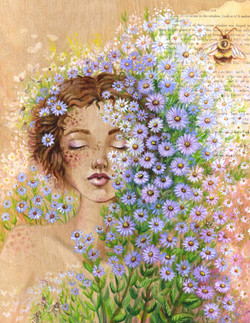 Among the Asters