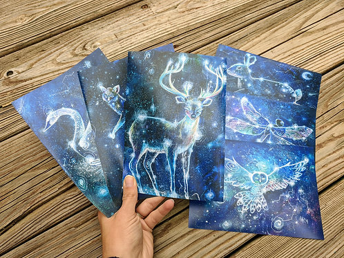 "Constellations Choice of 3 8""x10"" Print Set"