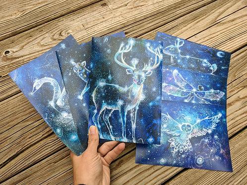 "Constellation Choice of  3 11""x14"" Prints"