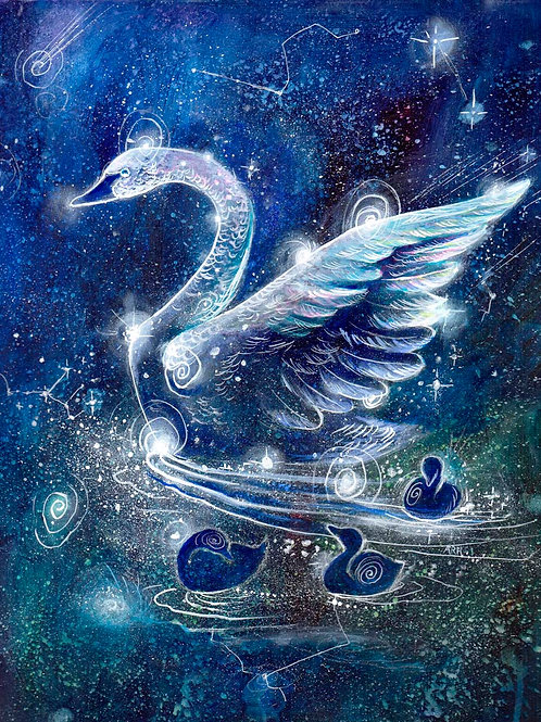The Swan Constellation - Original and Prints