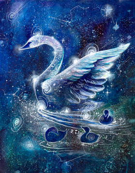 The Swan Constellation; the Mother Constellation