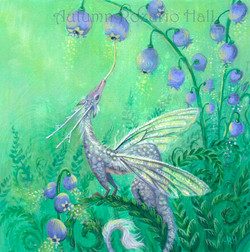 Bluebell Dragon-Draconia Lepidoptera