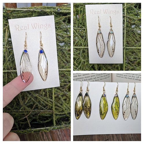 Cicada Wing Earrings- Gold
