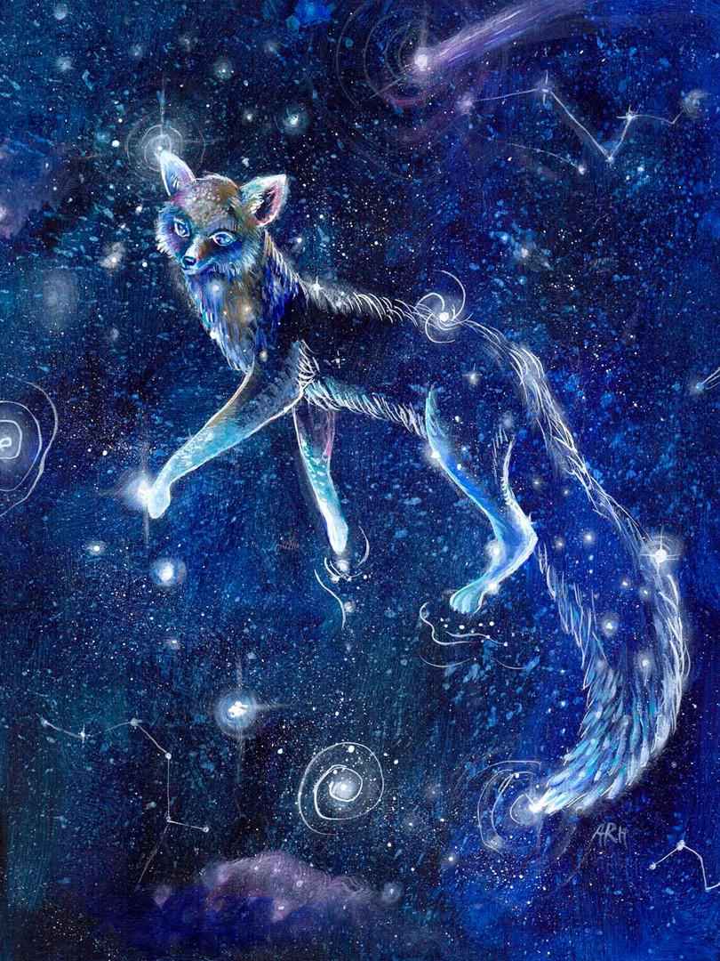 The Fox Constellation