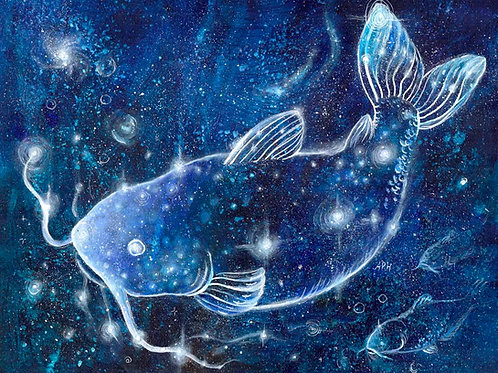 The Catfish Constellation- Original and Prints