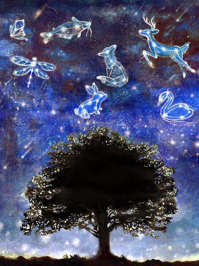 Star Strewn Sky