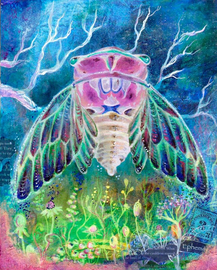 Cicada Night Song