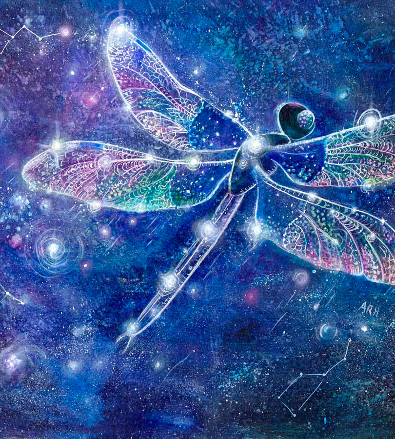 The Dragonfly Constellation