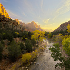 The Watchman, Zion
