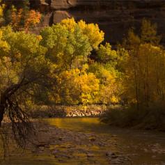 Virgin River, Zion