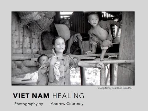 Viet Nam Healing