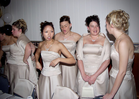 Brides Maids, Hornell, NY