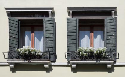 Vanice Windows.jpg