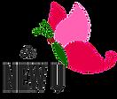 New U Logo_edited.png