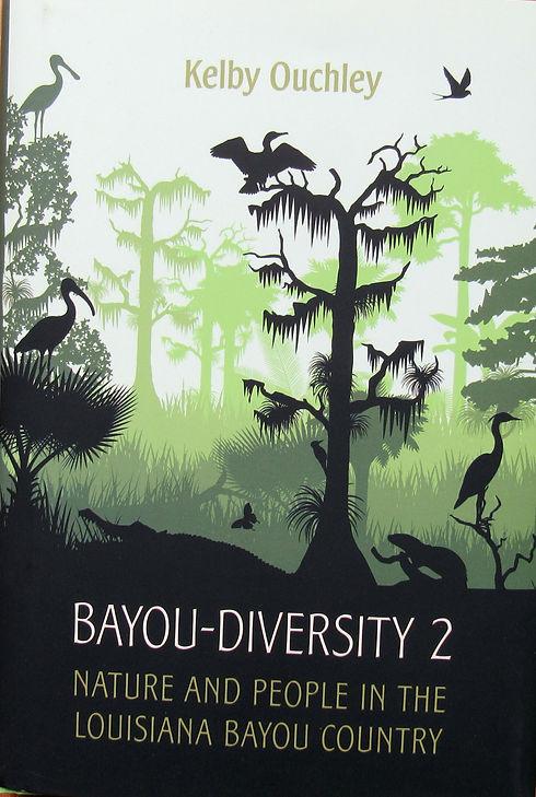 BD2 cover image.jpg