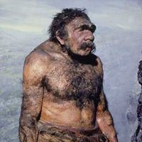 Sicily Island Neanderthal