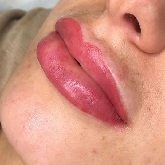 lipblush pink.jpg