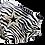 Thumbnail: Casablanca Zebra Star