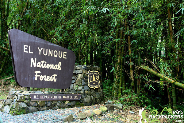 El-Yunque-National-Forest-4-M