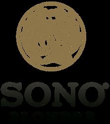 logo-sono-blonder_orig.png