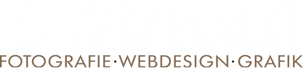 logo fotocosmos weiss-gold.png