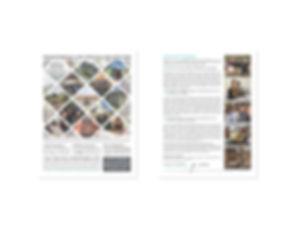 100 Fold content for portfolio3.jpg