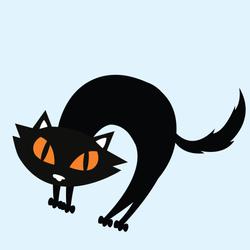 Cat-01 copy