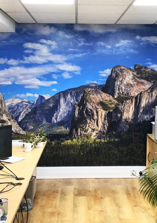 Mountain Wall Application.jpg