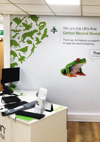 Frog Wall Application.jpg