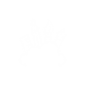Icons WHITE-03.png